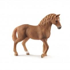 13852 QUATER HORSE MARE