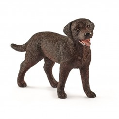 LABRADOR RETRIVER FEMALE...