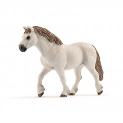 WELSH PONY MARE 13872