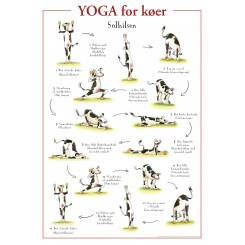 PLAKAT YOGA FOR KØER