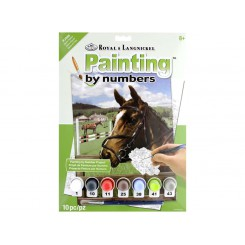 PAINT BY NUMBERS HEST